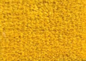 Mustard 20